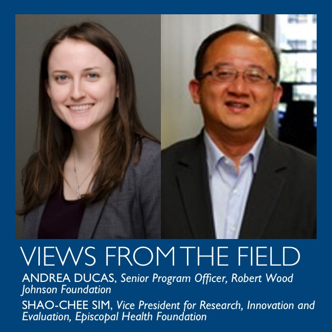 Views from the field by Andrea Ducas and Shao-Chee Sim